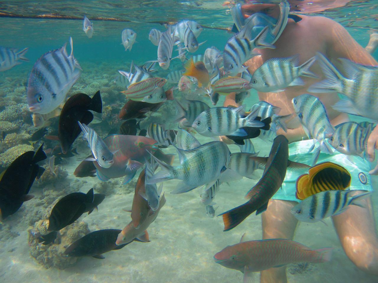 Hurghada – Impressionen