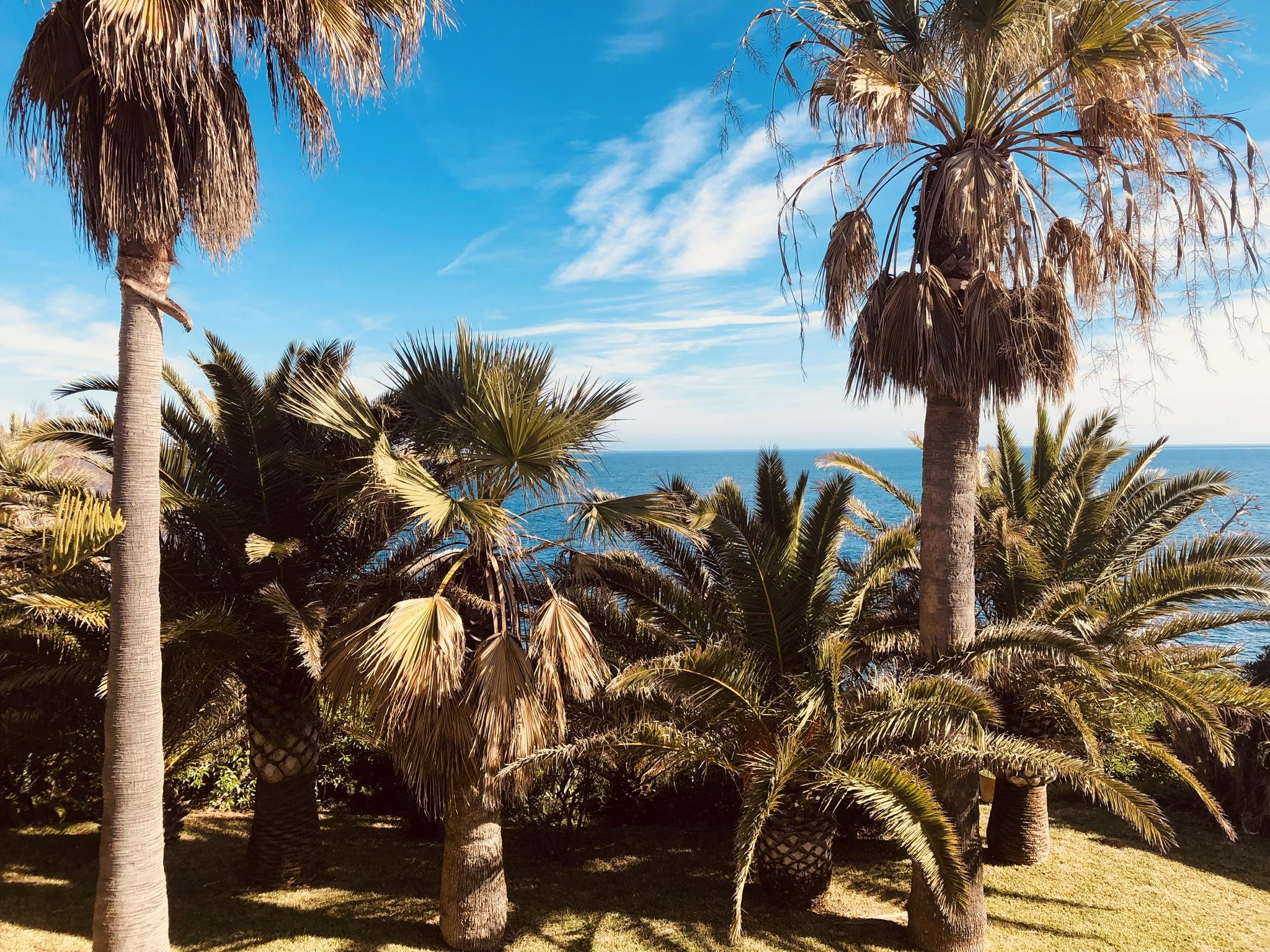 Mallorca – Impressionen