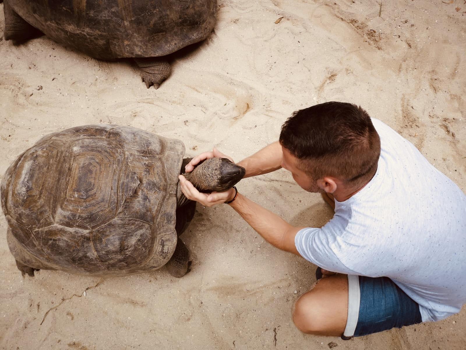 Ich mit einer Riesenschildkröte im Botanischen Garten auf Mahé Seychellen Impressionen