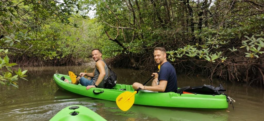 Mangrovenwald, Kanufahrt, Koh Lanta, Aktivität, Sehenswürdigkeit