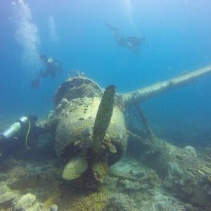Palau – Das wunderschöne Südseeparadies